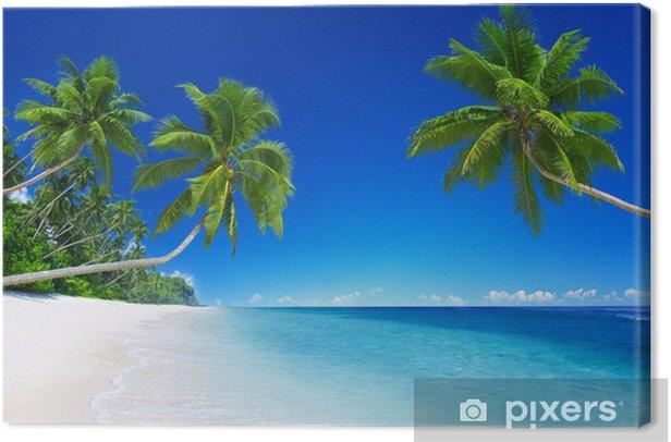 Tropical Paradise Canvas Print - Palm trees