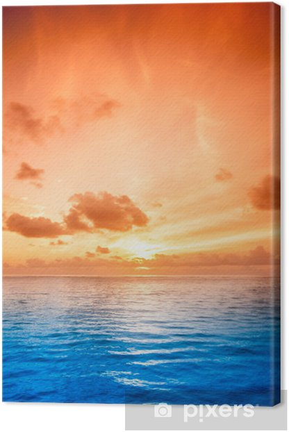 Tropical sea water in Maldives Canvas Print - Oceania