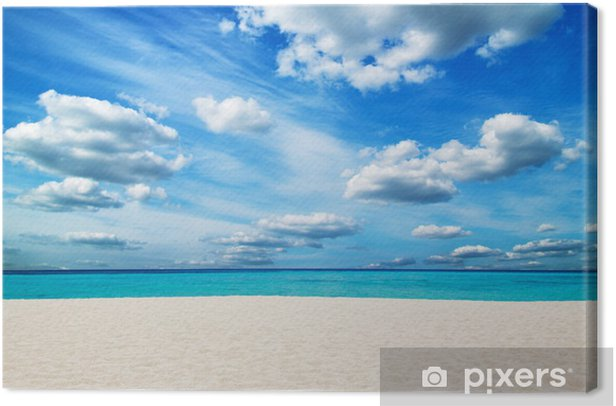 tropical sea Canvas Print - Water