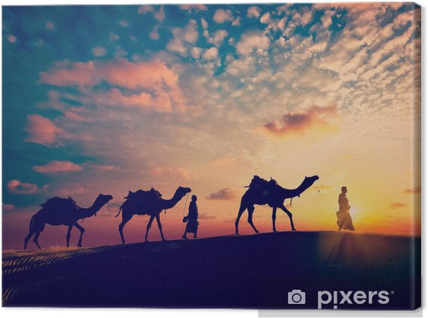 Two cameleers (camel drivers) with camels in dunes of desert Canvas Print - Sports