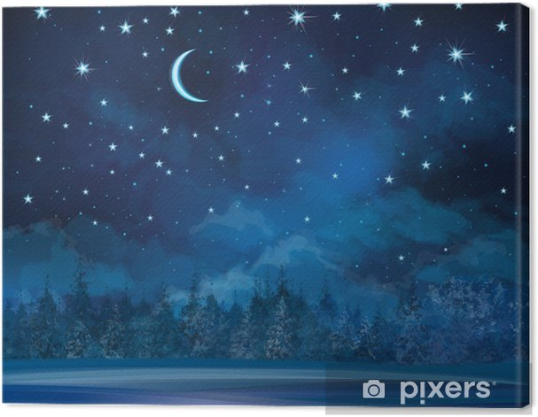 Vector night winter scene, sky and forest background. Canvas Print - Themes