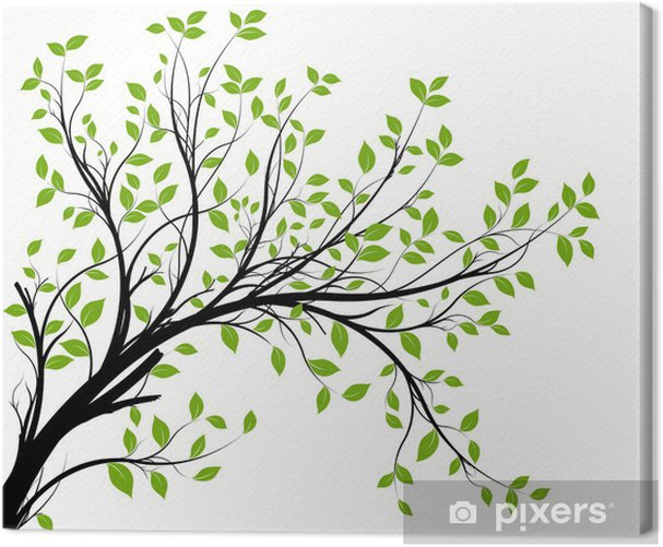 vector set - green decorative branch and leaves Canvas Print - Styles