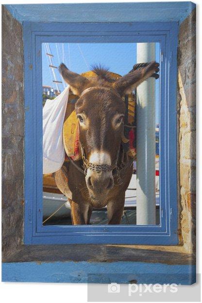 View of a posing donkey threw a window frame in Santorini islan Canvas Print - European Cities