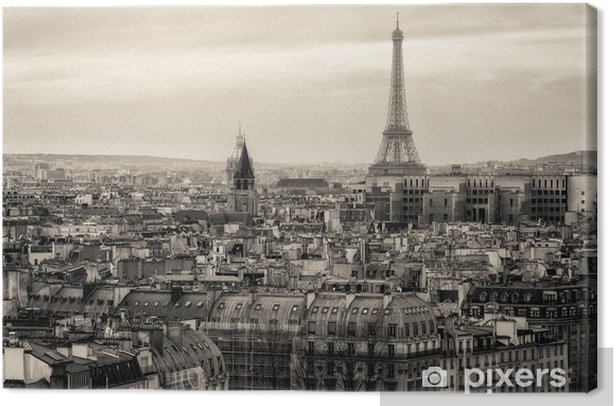 View of Paris and of the Eiffel Tower from Above Canvas Print -
