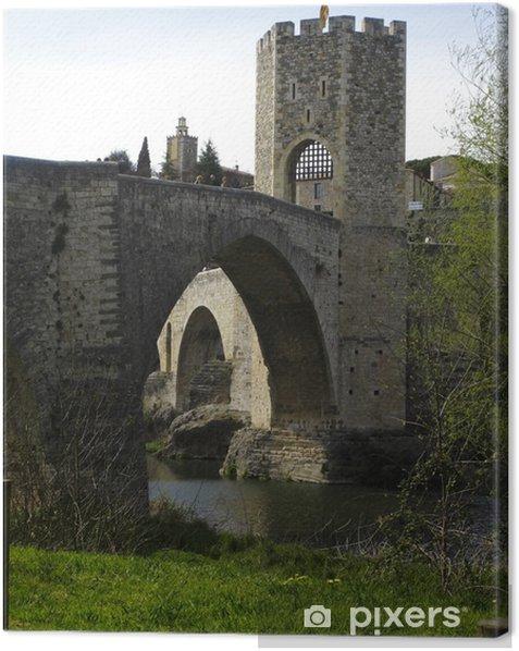 View of the medieval bridge of Besalu, Catalonia, Spain Canvas Print - Europe