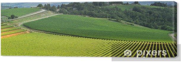 Vista panoramica di un vigneto nella verde campagna toscana Canvas Print - Europe