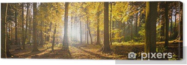 Waldlichtung Canvas Print - Themes