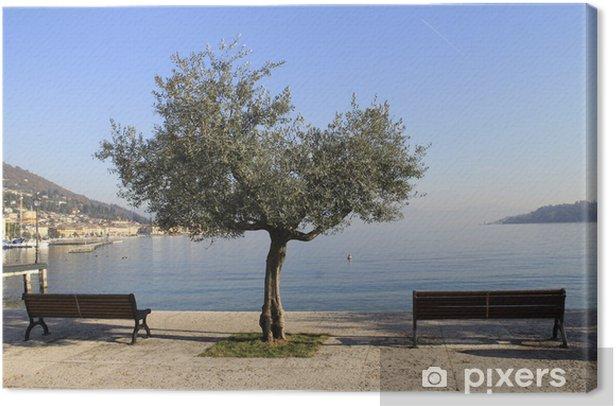 walk on the shore of Lake Garda Canvas Print - Holidays