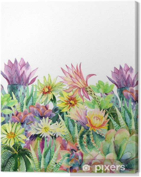 Watercolor blooming cactus background Canvas Print - Plants and Flowers