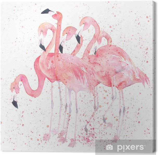 Watercolor flamingos with splash. Painting image Canvas Print - Animals