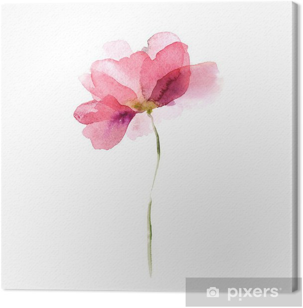 Watercolor flower Canvas Print -