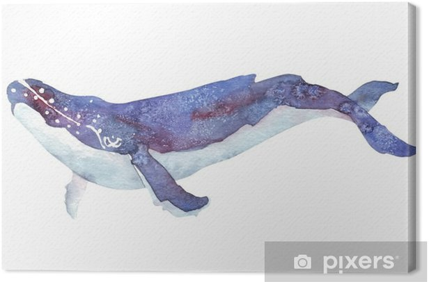 watercolor whale Canvas Print - Animals
