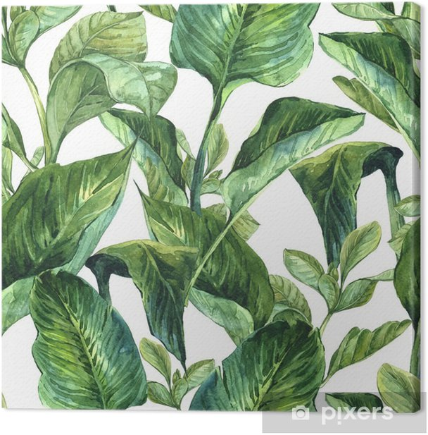 Watercolor with tropical leaves Canvas Print - Plants and Flowers