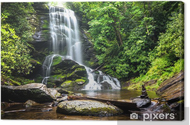 Waterfall amidst the forest greenery Canvas Print - Waterfalls