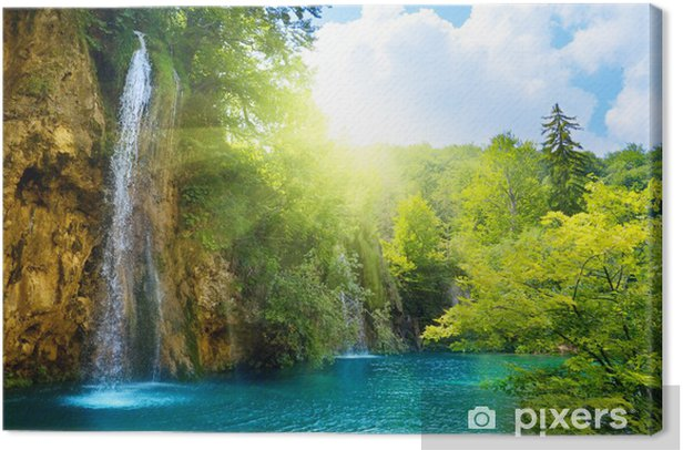 waterfalls in forest Canvas Print - Themes