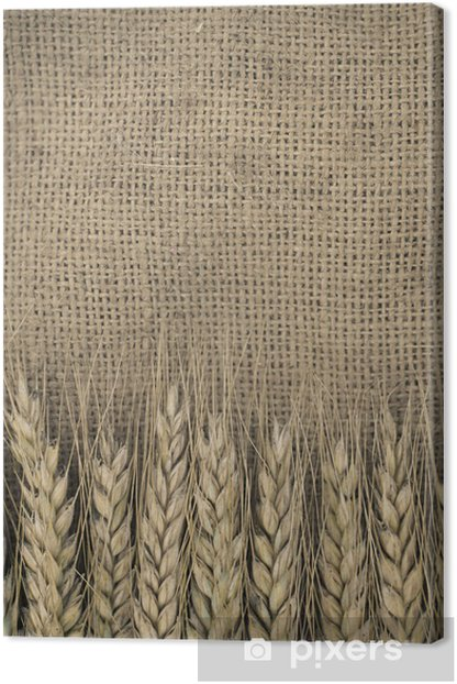Wheat ears border on burlap background Canvas Print - Agriculture