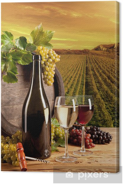 Wine in vineyard Canvas Print - Themes