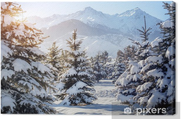 Winter mountain scenery Canvas Print - Themes