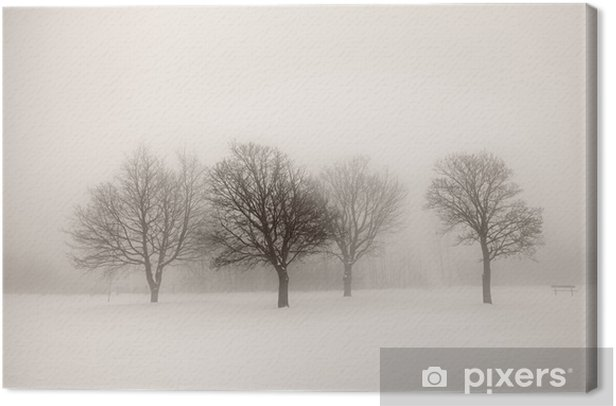 Winter trees in fog Canvas Print - Styles
