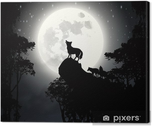 Wolf howling at the moon vector Canvas Print - Themes