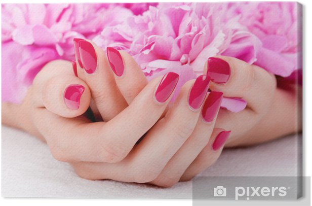 Woman cupped hands with manicure holding a pink flower Canvas Print -