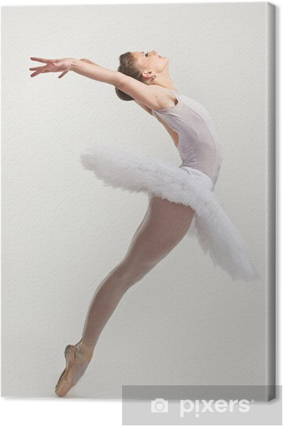 Young ballerina dancer in tutu performing on pointes Canvas Print - Ballet
