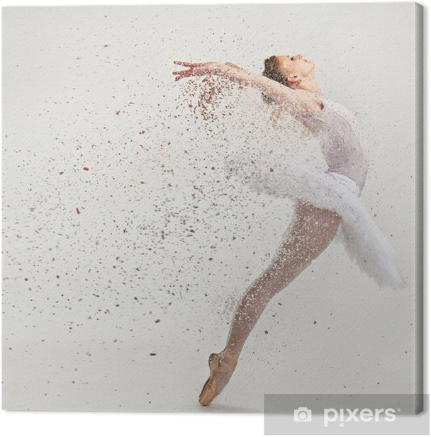 Young ballerina dancer in tutu performing on pointes Canvas Print - Themes