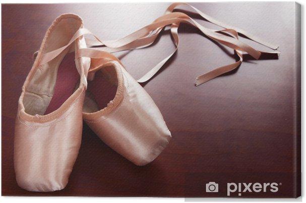límpido a la vista en stock estilo distintivo zapatos de ballet Canvas Print