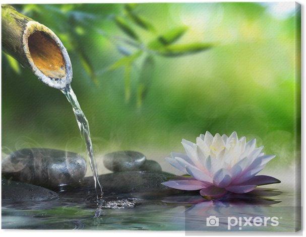 zen garden with massage stones and waterlily Canvas Print - Styles