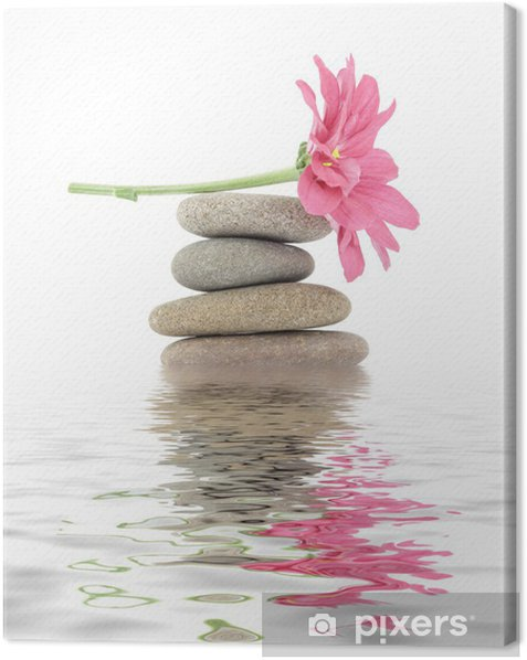zen / spa stones with flowers Canvas Print - SPA & Wellness