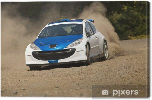 Canvas Rally auto in actie - Peugot 206 S2000 - Extreme sport