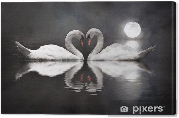 Canvas Romantische zwaan tijdens Valentijnsdag - Vogels