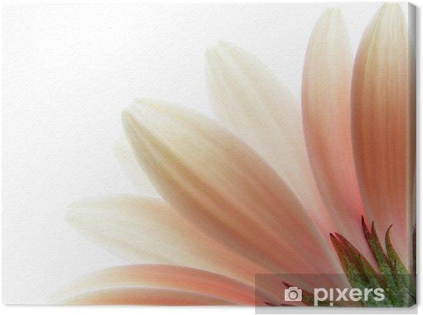 Canvas Roze gerbera -
