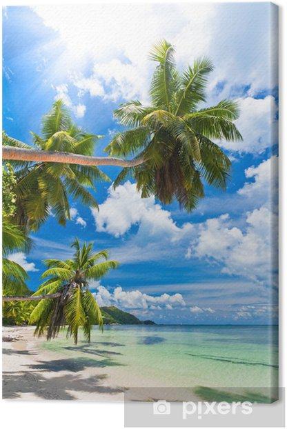 Canvas Seychellen strand kokosnoot - Palmbomen