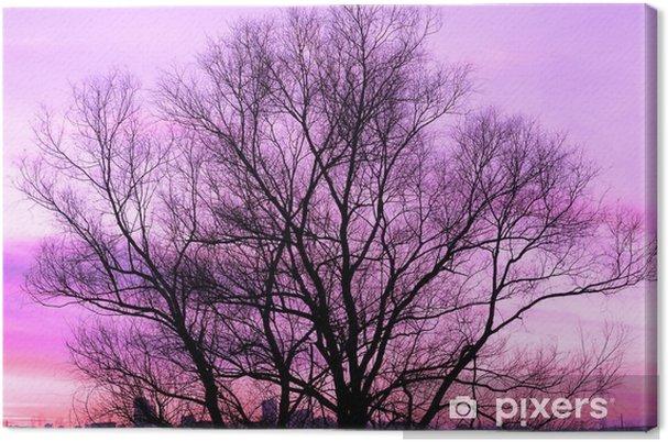 Canvas Silhouet van een grote oude boom op een prachtige zonsondergang paarse achtergrond retro gefilterd - Bloemen en Planten
