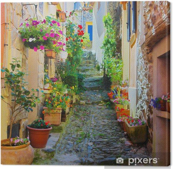 Canvas Smalle en kleurrijke steegje in een dorpje in de Provence -