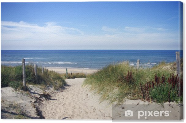 Canvas Steegje naar het strand - Nederland