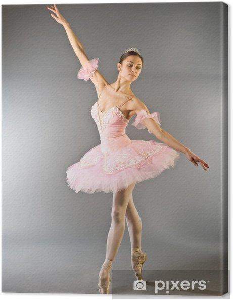Canvas Teen dans ballerina's geïsoleerd - Thema's