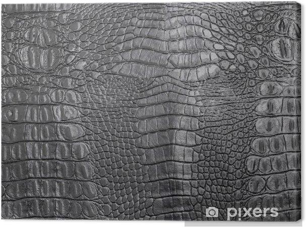 Canvas Texture - Texturen