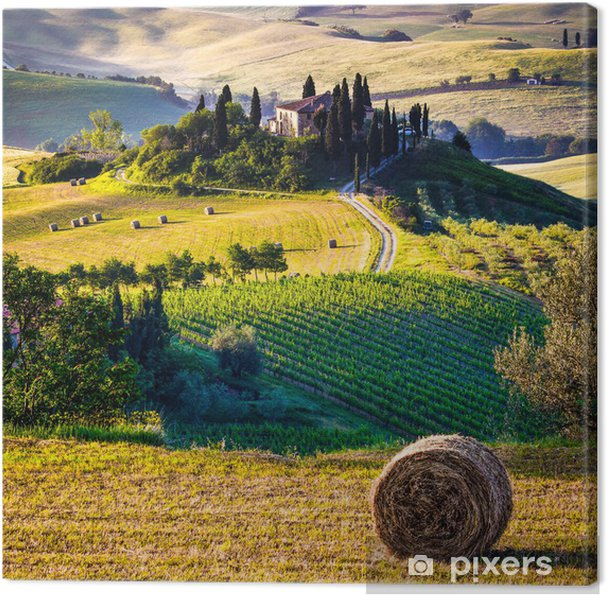Canvas Toscane, Italiaans landschap - Thema's