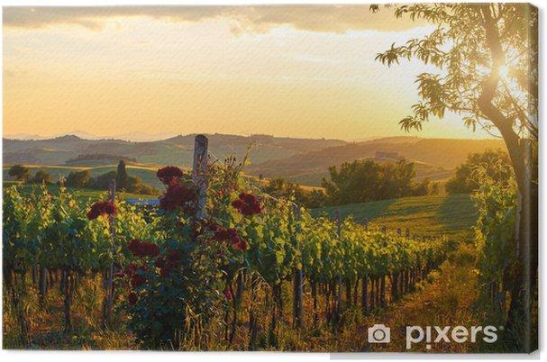 Canvas Toscane wijngaarden in de herfst - Bergen