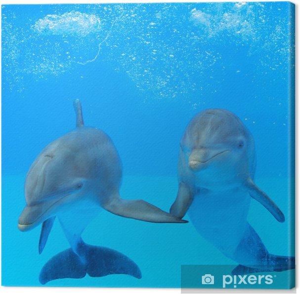 Canvas Twee dolfijnen in het water - Thema's