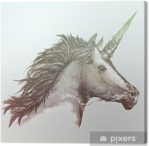 Canvas Unicorn - Stijlen