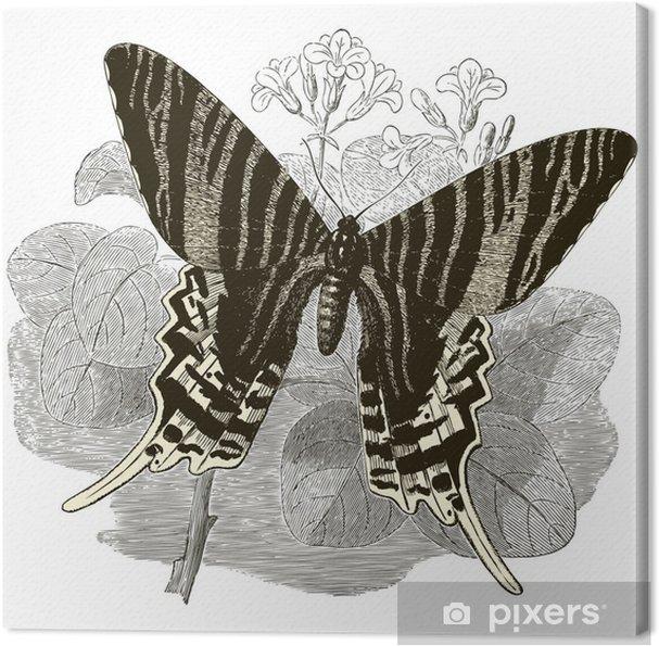 Canvas Vintage Vlinder - Andere Andere