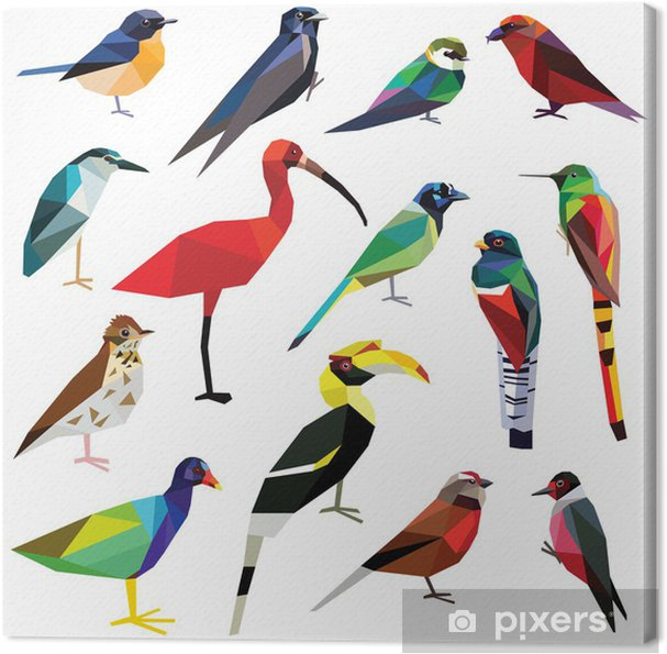 Canvas -Vogels instellen kleurrijke vogels laag poly ontwerp geïsoleerd op wit background.Heron,Linet,Hornbill,Jay,Woodpecker,Flycatcher,Trogon,Gallinule,Martin,Crossbill,Comet,Ibis,Swallow,Thrush,Hummingbird. - Vogels