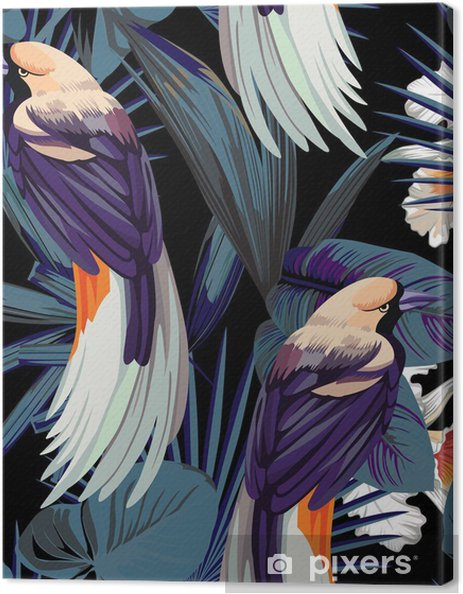 Canvas Vogels, orchideeën en 's nachts jungle naadloze achtergrond - Dieren