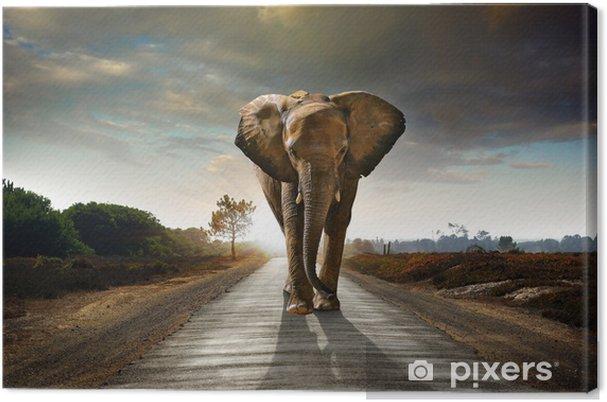Canvas Walking Elephant - Olifanten