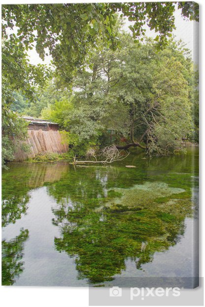 Canvas Weerspiegeling van de groene boom - Wildernis