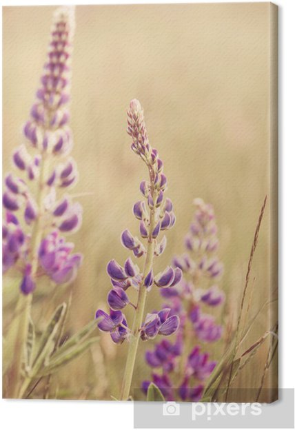 Canvas Wild Lupines - Bloemen