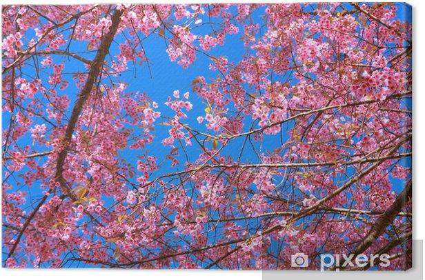 Canvas Wilde Himalaya bloem van de kers - Wildernis